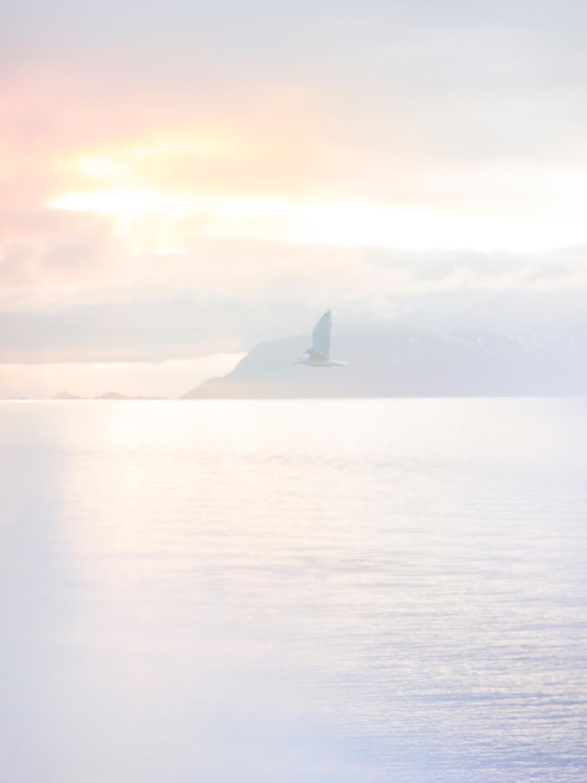 Norway x Hermès - © Paul Rousteau